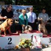 Ereb Bordomax farm  Speciality dog show with CAC-HR title FCI groups 2 and 9.   Samobor 21.09.2014.   Samobor 21.09.2014.    .